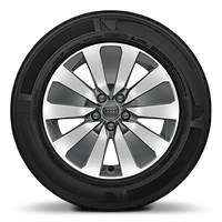 Cast alloy wheels, 5-arm Aero style, Contrast Gray, partly polished, 6.5J x 16 with 195/55 R16 tires