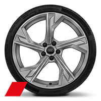 Alloy wheels, 5-arm flag style, Matte Platinum Gray, 9.0J x 20, 265/30 R20 tires, Audi Sport GmbH