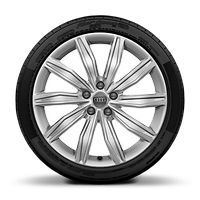 Cast alloy wheels in 10-spoke dynamic style, 8.5J x 19, model-specific tires