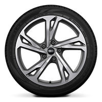 """20"""" 5-twin spoke design platinum gray wheels with summer tires"""