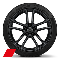 Alloy wheels, 5-spoke V-style, Black, 8.5J|11.0Jx19, 245/35|295/35 R19 tires