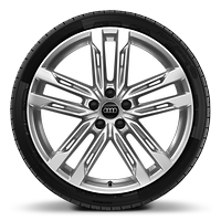 Alloy wheels, 5-double-spoke style (S style), 9.0J x 20, 265/40 R20 tires