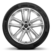 Audi Sport cast alloy wheels, 5-double-arm style, 8.5J x 20 with 255/40 R20 tires