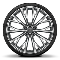 Alloy wheels 8.5J x 21 with 255/35 R21 tires