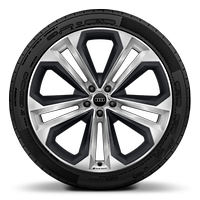 Audi Sport cast alloy wheels, 5-double- spoke module style, Matte Structure Gray inserts, 10Jx22 w/ 285/40 R22 tir.