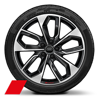 Alloy wheels,5-double-spoke edge style, Anthracite Black, diam.-turned,8J x 19, 235/35 R19 tires, Audi Sport GmbH