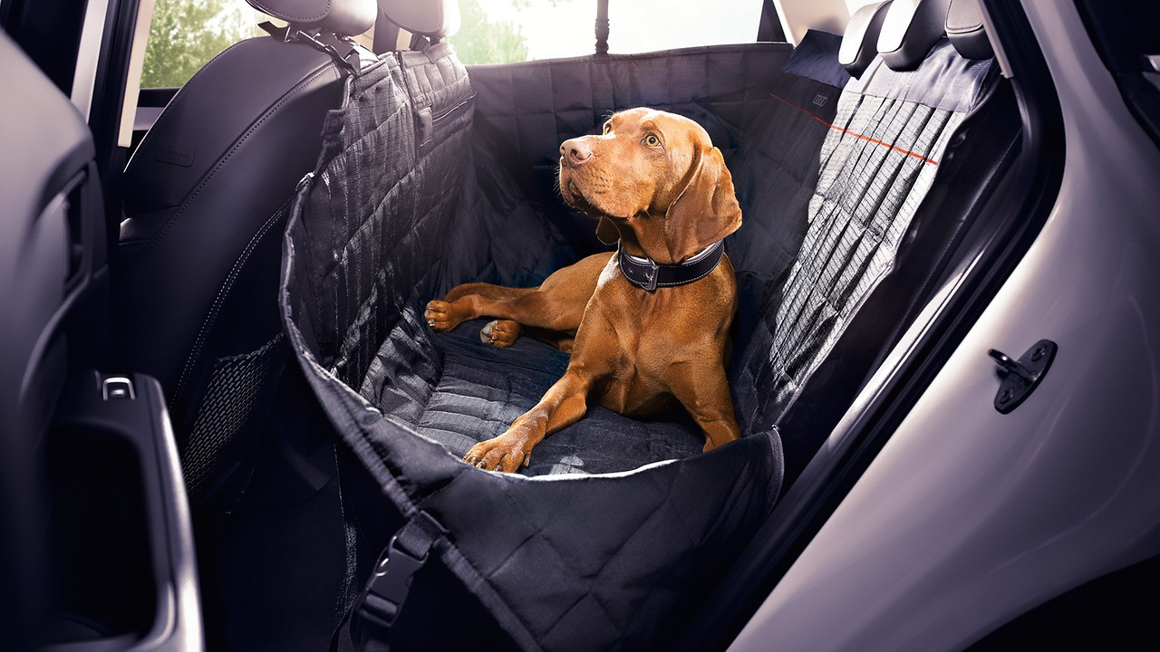 Protective Rear Seat Pet Cover