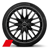 "20"" Audi Sport 10-spoke Y design, gloss Anthracite black with turned finish, 255/30 performance tires"