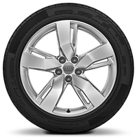 Cast alloy wheels, 5-arm wing style, 8J x 19