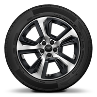 "17"" alloy wheels in 5-spoke design with plastic inserts in black"