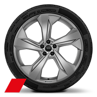 Alloy wheels, 5-arm edge style, Matte Platinum Gray, 10.0J x 22, 285/35 R22 tires, Audi Sport GmbH