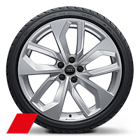 Forged aluminum wheels in 5-twin-spoke edge design, size 9 J x 20, with 275/30 R 20 tires