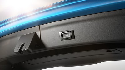 Luggage compartment lid, electrically opening and closing