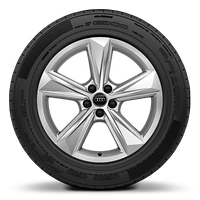 Alloy wheels, 5-arm star style, 8.5J x 19, 255/55 R19 tires