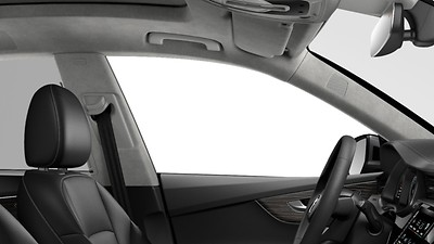 Headliner in Alcantara®
