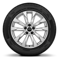 Alloy wheels, 5-double-arm style, 7.0J x 18, 235/55 R18 tires