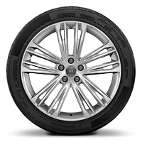 Cast alloy wheels, 5-double-spoke V style, 8.5J x 20