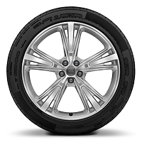 Cast alloy wheels, 5-segment-spoke style, 10J x 21