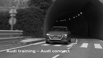 Audi Connect: Infotainment services