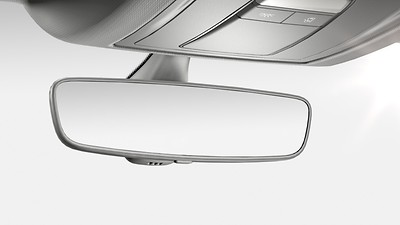Auto-dimming interior rearview mirror