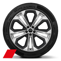 Alloy wheels, 5-double-spoke module style, Matte Struct. Gray inserts, 9.5J x 21, 285/40 R21 tires, Audi Sport GmbH