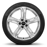 Audi Sport cast aluminium wheels in 5-spoke blade design<sup>1</sup>