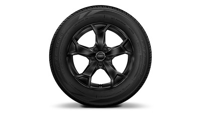 "Alloy wheels, 5-arm ""Secare"" style, Black, 6.5J x 17, 215/65 R17 snow tires"