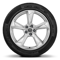 Cast alloy wheels, 5-arm dynamic style, 7J x 19 with 235/50 R19 tires