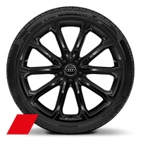 "21"" alloy wheels in 5-V-spoke polygon design, black with 255/35 tyres"