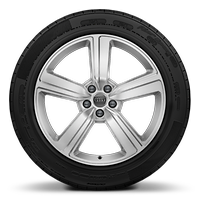 Cast alloy wheels, 5-arm style, 9J x 20 with 255/50 R20 tires