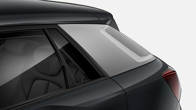Style package with matte Y-pattern with Carbon exterior mirror housings