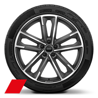 Alloy wheels, 5-double-arm style, Matte Titanium Gray, diam.-turn., 8.5J x 20, 255/40 R20 tires, Audi Sport GmbH