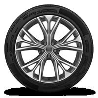 "21"" 5-W-spoke design, bi-color wheels"