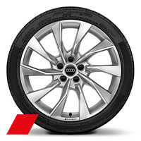 Alloy wheels, 10-spoke turbine style, Platinum Gray, diamond-turned, 8.5Jx19, model-specific tires, Audi Sport GmbH