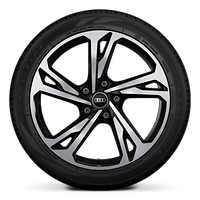 "20"" 5-double-spoke design, bi-color black wheels"