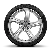 19x8.5J 5-arm dynamic design alloys