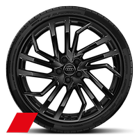 Cast alloy wheels, 5-segment-spoke Evo style, Glossy Black, 9.0J x 20, 275/30 R20 tires