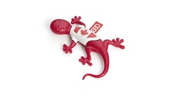 Air freshener gecko, Canadian version, red, spicy