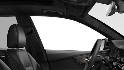 Headliner in Black Alcantara®