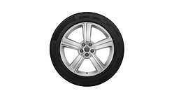 Complete winter wheel in 5-arm design, galvanic silver, metallic, 9 J x 20, 255/50 R 20 109H XL