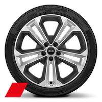 9999999Alloy wheels, 5-double-spoke modu le style, Matte Structure Gray inser ts, 8.0J x 19, 245/40 R19 tires, Audi Sport