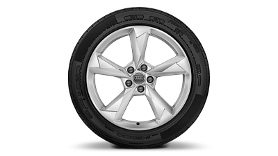 Alloy wheels, 5-arm dynamic style, 7.0J x 19, 235/50 R19 snow tires