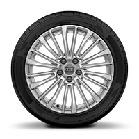 Cast alloy wheels, multi-spoke style, 8J x 18 with 225/55 R18 tires