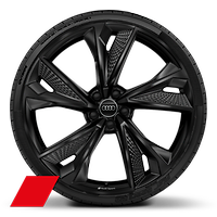 Alloy wheels, 5-V-spoke structure style Black, 10.5J x 22, 285/30 R22 tires