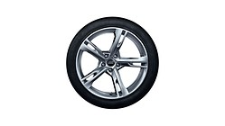 Complete winter wheel in 5-arm ramus design, brilliant silver, 8.5 J x 19, 255/35 R19 96V XL