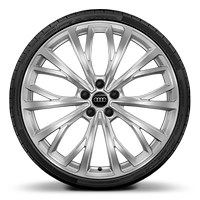 "21"" alloy wheels in 10-Y-spoke design with 255/35 tyres"
