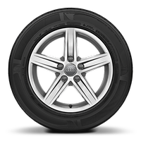 Cast alloy wheels, 5-spoke star style, 7J x 16 with 205/55 R16 tires
