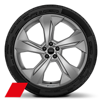 Audi Sport cast alloy wheels, 5-arm edge style, Matte Platinum Look, 10J x 22, 285/35 R22 tires